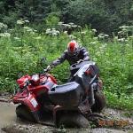 SAGITTA ORSO ATV 200 - Фото. (21)