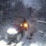 SAGITTA ORSO ATV 200 - Фото. (23)