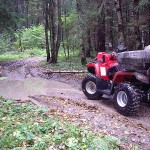 SAGITTA ORSO ATV 200 - Фото. (33)