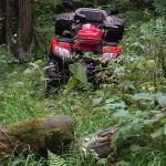 SAGITTA ORSO ATV 200 - Фото. (34)